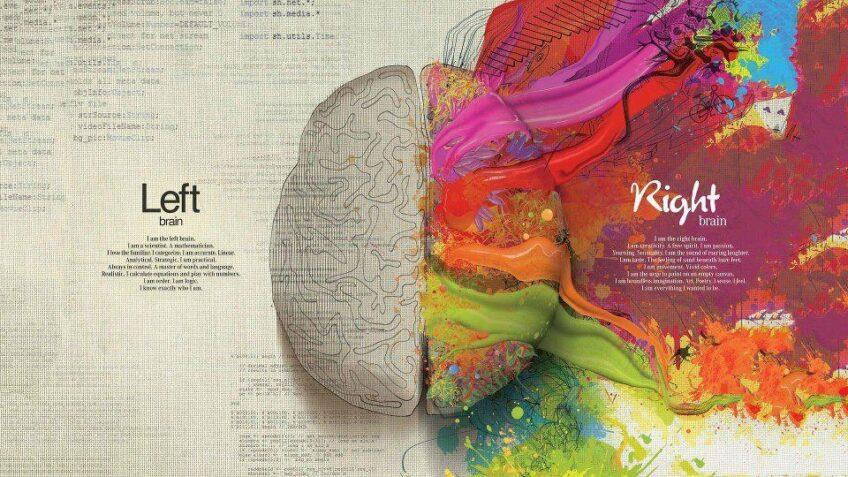 Kurz kresby pravou mozkovou hemisférou